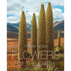 Flowers of the Earth